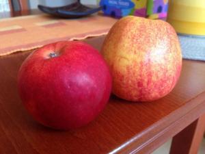 Jablka dnes vydrží déle
