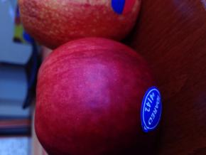Jablka dnes vydrží déle #4