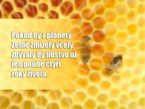 Pokud by z planety Země zmizely včely