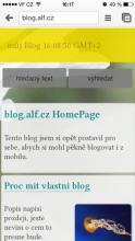 Proc mit vlastni blog #2